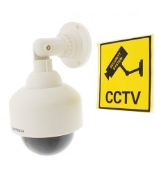 Dome Styled Decoy CCTV Camera & Warning Label (DC-25)