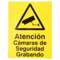 CCTV Warning Window Window Sticker (Spanish language)