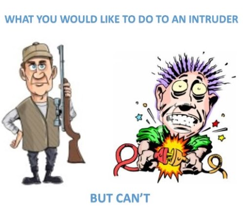 What customers often tell us they would like to do to Intruders